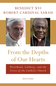 Image result for pope bxvi cardinal sarah book co-authorship